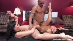 Hot Japanese girl Asa Akira is havving ffm threesome fuck with Dana DeArmond and Derrick Pierce
